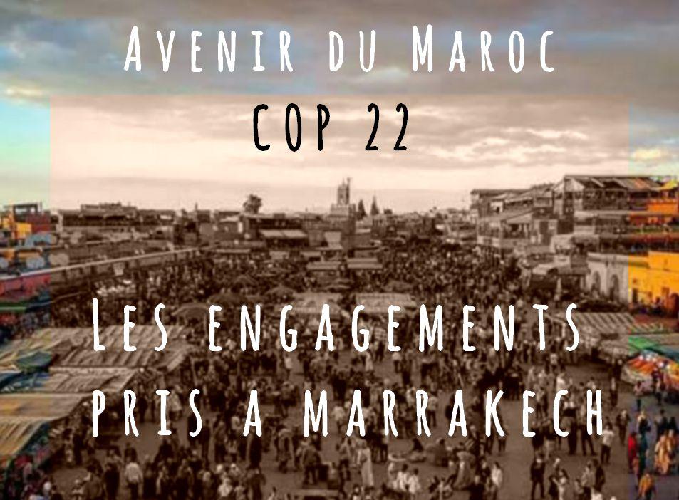 Engagement de la Cop 22 pris à Marrakech