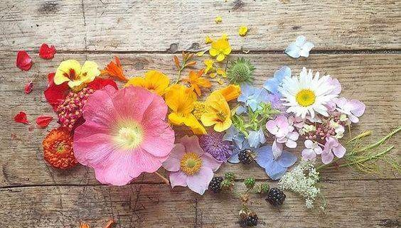 fleurs en composition naturelle