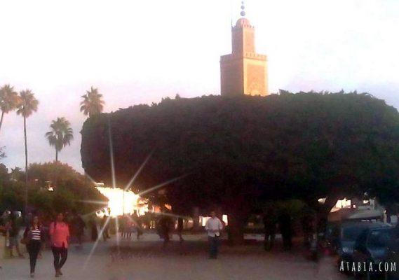 maroc rabat centre