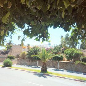 ville-de-Safi-Maroc_region-marrakech