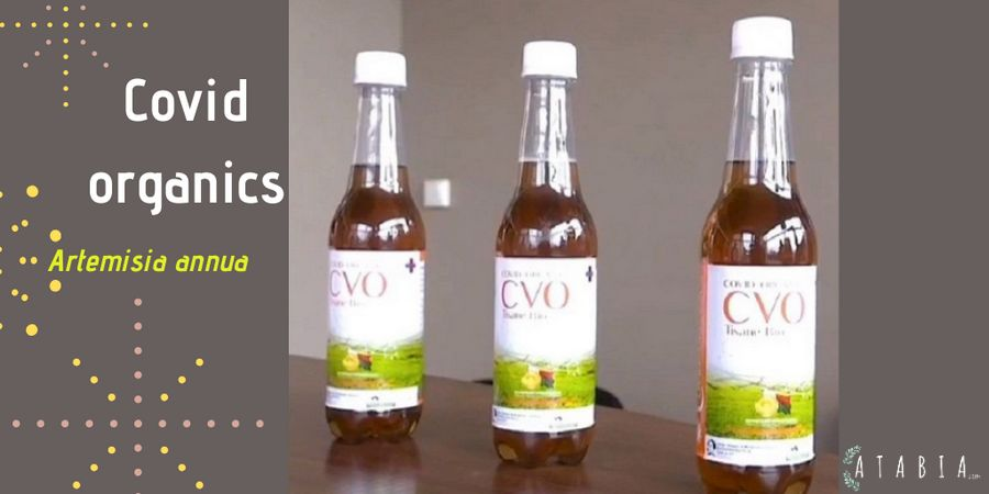 Bouteilles de Covid-organics remede mlagache contre Sars Covid -19