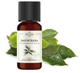 Flacon d'huile essentielle de Ravintsara
