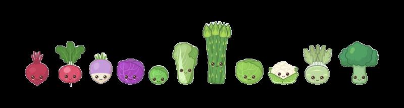 Image de légumes divers , betterave , radis , navet, choux, brocoli, asperges..