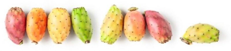 Fruits de figue de barbarie